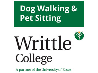 Dog Walking And Pet Sitting Certificate At Writtle College