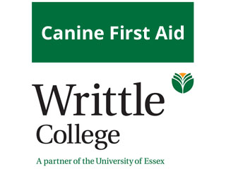 Canine First Aid Certificate At Writtle College